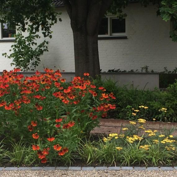 Tuinontwerp moderne landelijke tuin