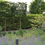 Landelijk tuinontwerp bij huis van Jan des Bouvrie