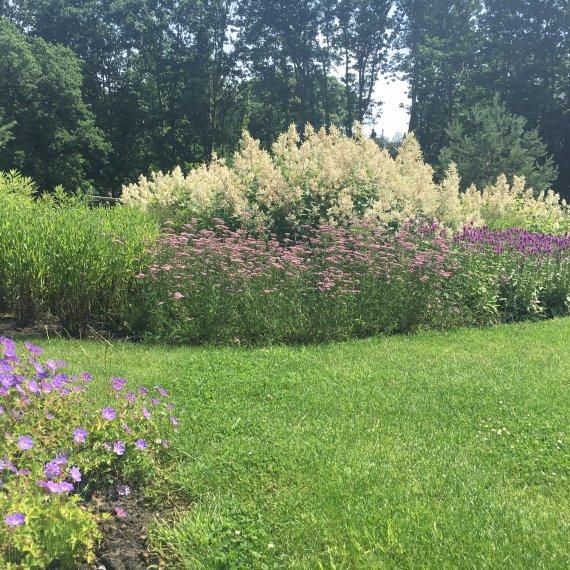 Bloeiende borders natuurlijke tuinen