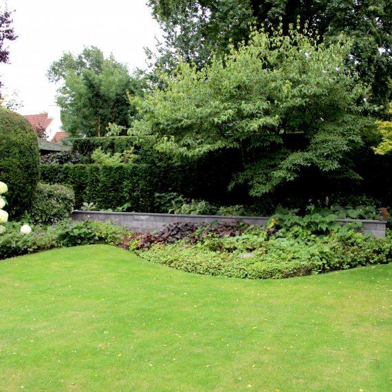 Muurtjes en hagen versterken de structuur van deze landschappelijke tuin bij een moderne villa in Eindhoven