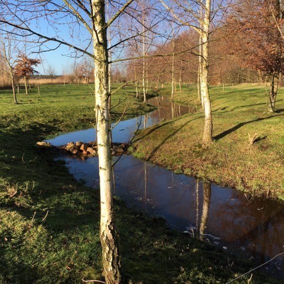 Terreininrichting vakantiepark Ter Spegelt