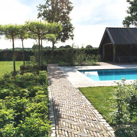 Luxe tuinen met zwembad