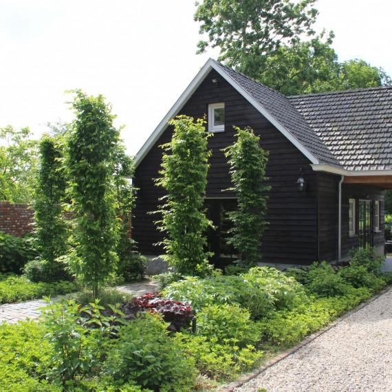 Landelijk tuinontwerp Eindhoven