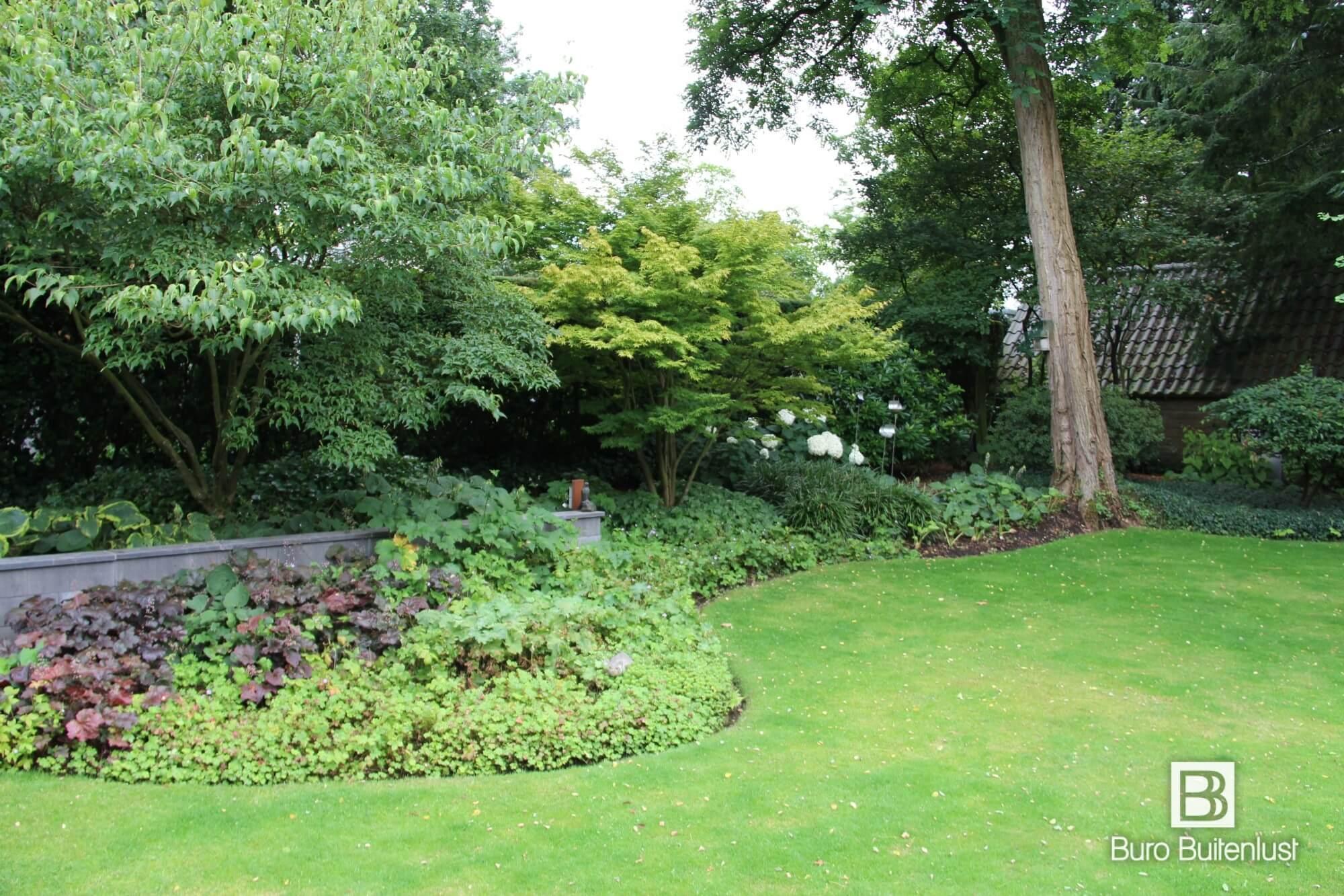 Veel prachtige vaste planten in deze natuurlijk ogende bostuin in Eindhoven