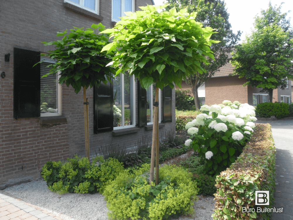 Een eenvoudig en helder tuinontwerp versterkt de uitstraling van uw woning